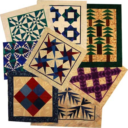 Precision Pieced Quilts